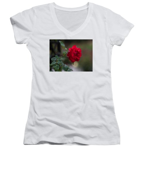 By Any Other Name... Women's V-Neck (Athletic Fit)