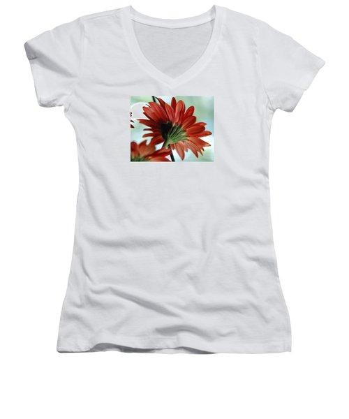 Cabrera Daisy Women's V-Neck T-Shirt (Junior Cut) by John Schneider