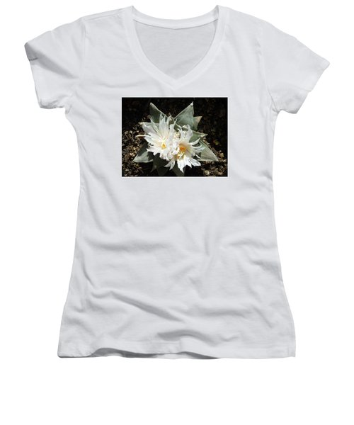 Cactus Flower 9 Women's V-Neck