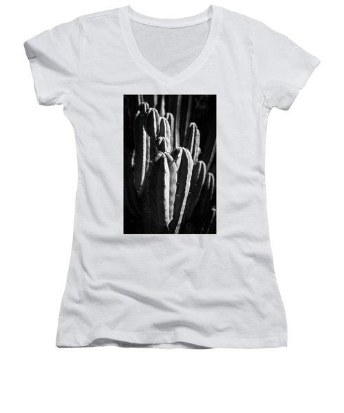 Cactus IIi Women's V-Neck
