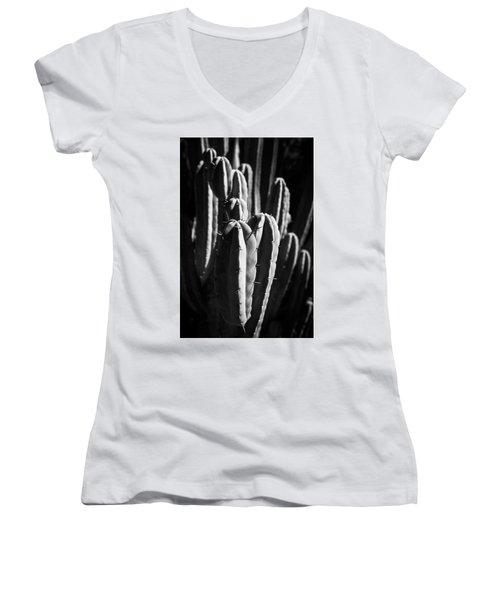 Cactus IIi Women's V-Neck (Athletic Fit)