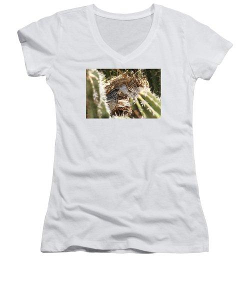 Cactus Wren Feather Women's V-Neck (Athletic Fit)