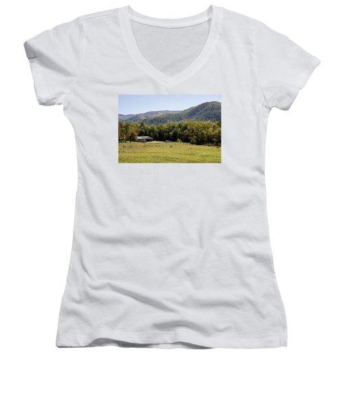 Cades Place Women's V-Neck T-Shirt (Junior Cut) by Ricky Dean