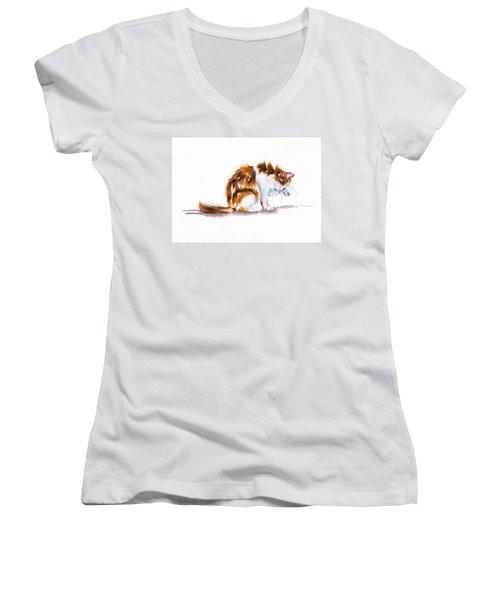 Calico Cat Washing Women's V-Neck T-Shirt
