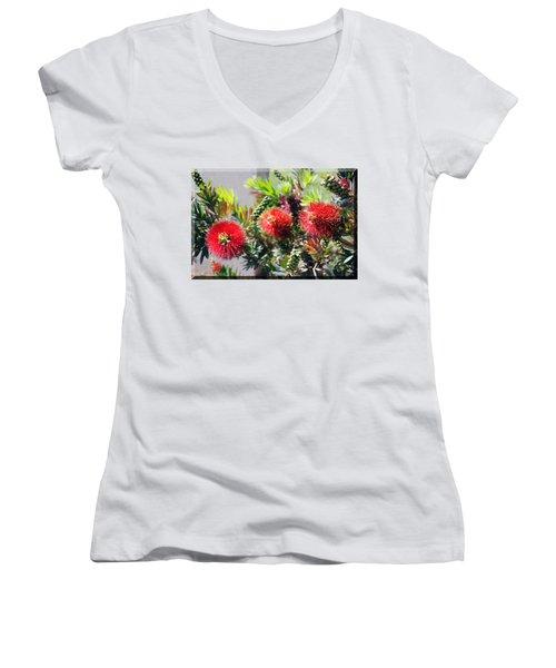Callistemon - Bottle Brush T-shirt 6 Women's V-Neck (Athletic Fit)