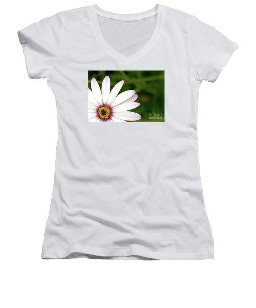 Cape Daisy Women's V-Neck T-Shirt (Junior Cut) by Baggieoldboy