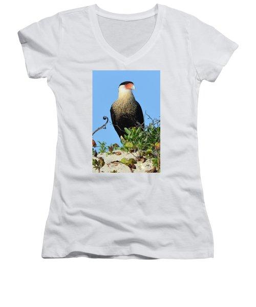 Women's V-Neck T-Shirt (Junior Cut) featuring the photograph Caracara Portrait by Debra Martz