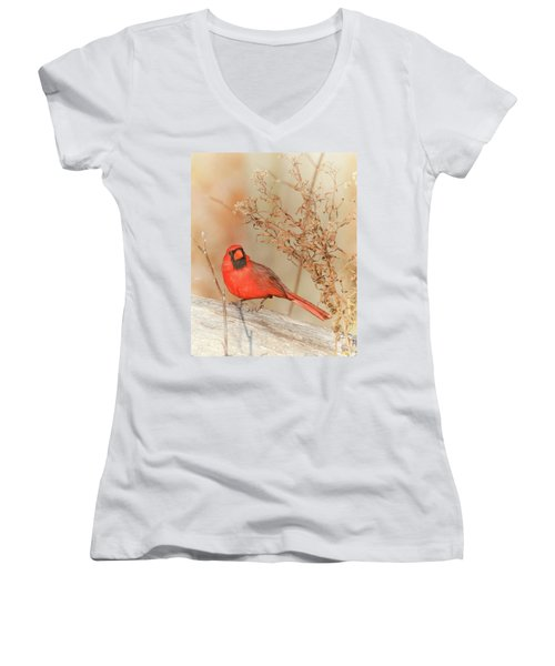 Cardinal In Fall  Women's V-Neck