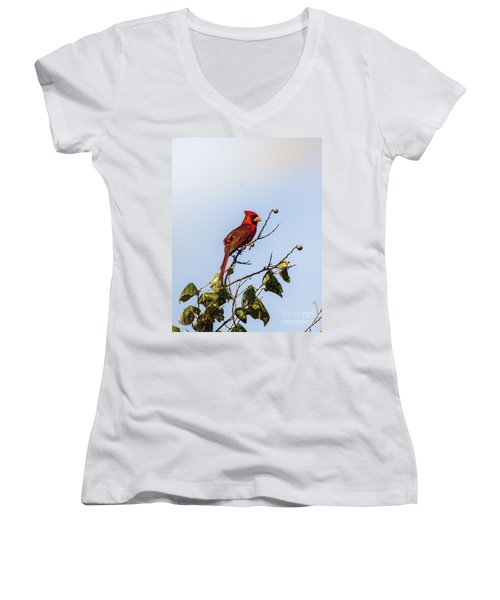 Women's V-Neck T-Shirt (Junior Cut) featuring the photograph Cardinal On Treetop by Robert Frederick