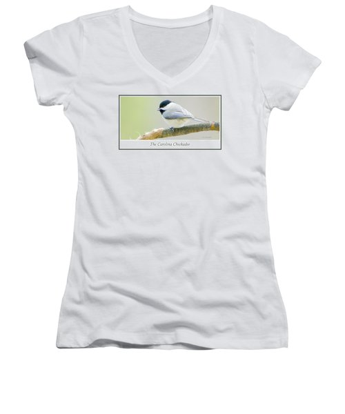 Carolina Chickadee, Animal Portrait Women's V-Neck T-Shirt