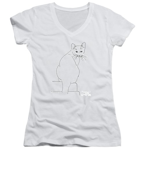 Cat-artwork-prints Women's V-Neck