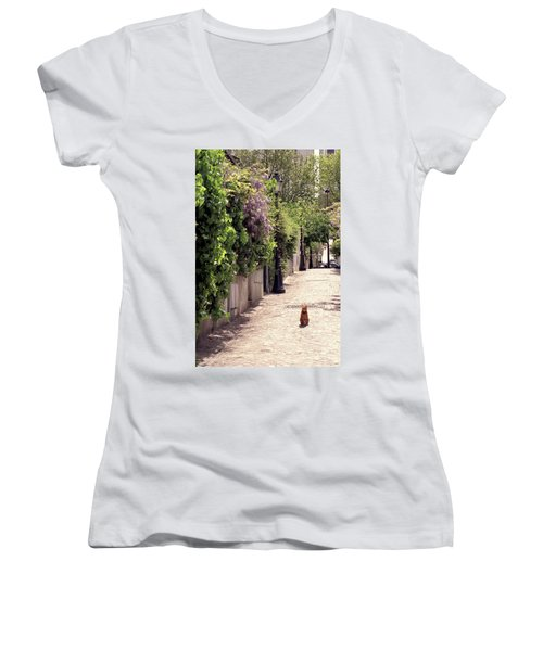 Cat On Cobblestone Women's V-Neck
