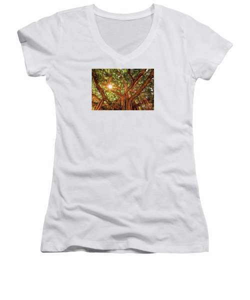 Catch A Sunbeam Under The Banyan Tree Women's V-Neck