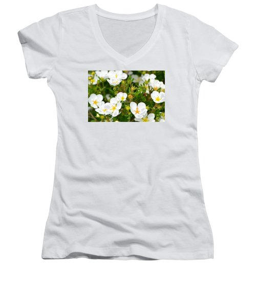 Catching The Sun Women's V-Neck (Athletic Fit)