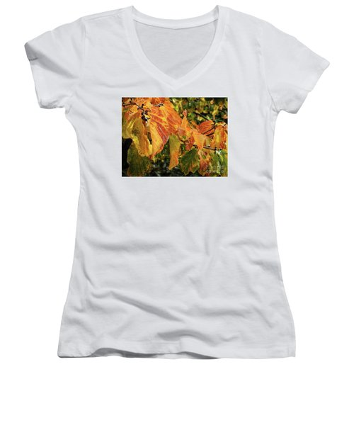 Women's V-Neck T-Shirt featuring the photograph Changes by Peggy Hughes