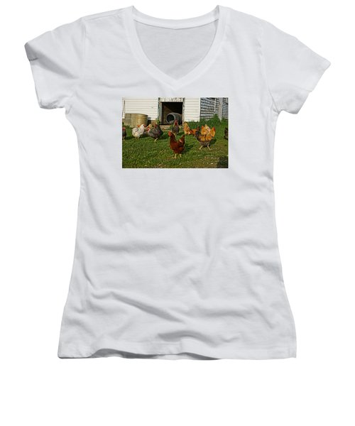 Women's V-Neck T-Shirt (Junior Cut) featuring the photograph Chicken Scratch by Steven Clipperton