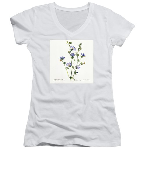 Chicory Women's V-Neck