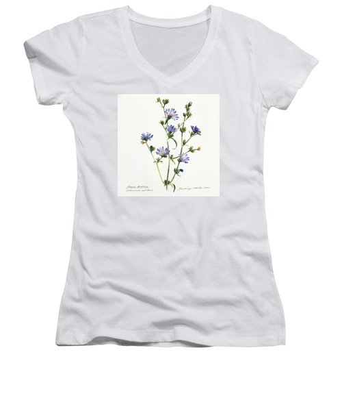 Chicory Women's V-Neck