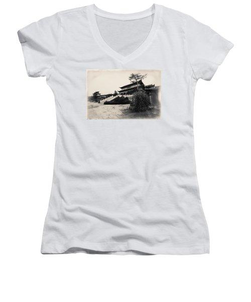 China #0640 Women's V-Neck T-Shirt (Junior Cut) by Andrey Godyaykin