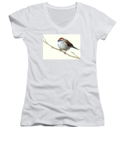 Chubby Sparrow Women's V-Neck T-Shirt