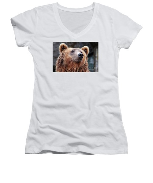 Women's V-Neck T-Shirt (Junior Cut) featuring the photograph Close Up Bear by MGL Meiklejohn Graphics Licensing