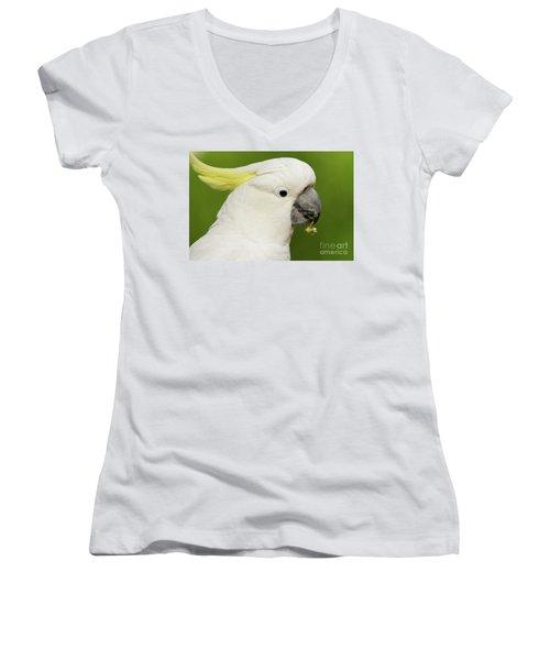 Cockatoo Close Up Women's V-Neck T-Shirt (Junior Cut) by Craig Dingle
