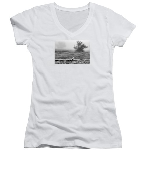 Women's V-Neck T-Shirt (Junior Cut) featuring the photograph Cold Frosty Morning by Monte Stevens