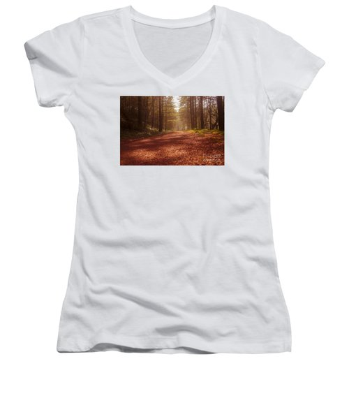 Colligan Autumn 2 Women's V-Neck T-Shirt