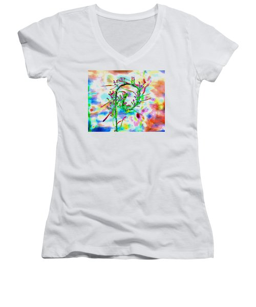 Color Curl Women's V-Neck