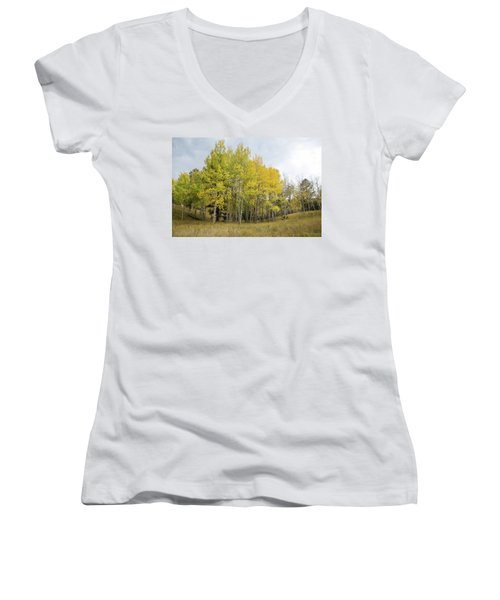 Colorado Aspens In Autumn Women's V-Neck