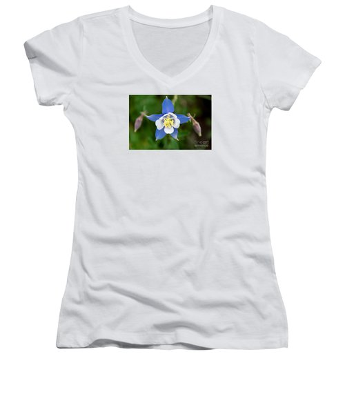 Colorado Blue Women's V-Neck T-Shirt (Junior Cut) by Sandy Molinaro