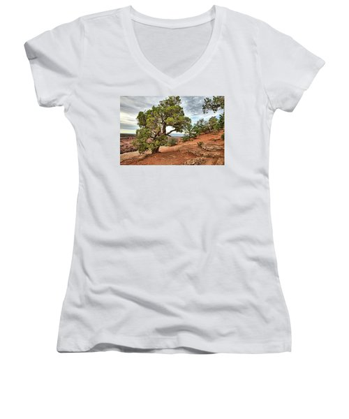Colorado National Monument Women's V-Neck