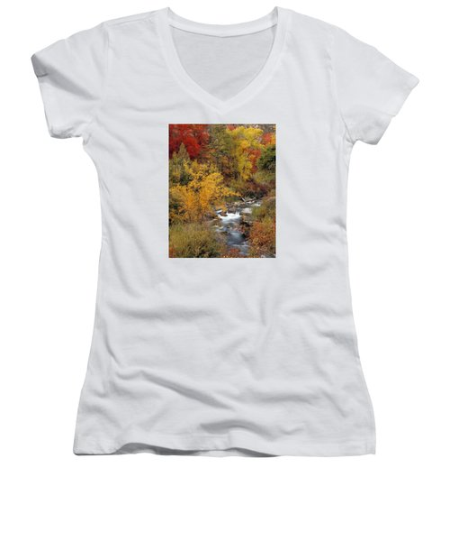 Colorful Canyon Women's V-Neck (Athletic Fit)