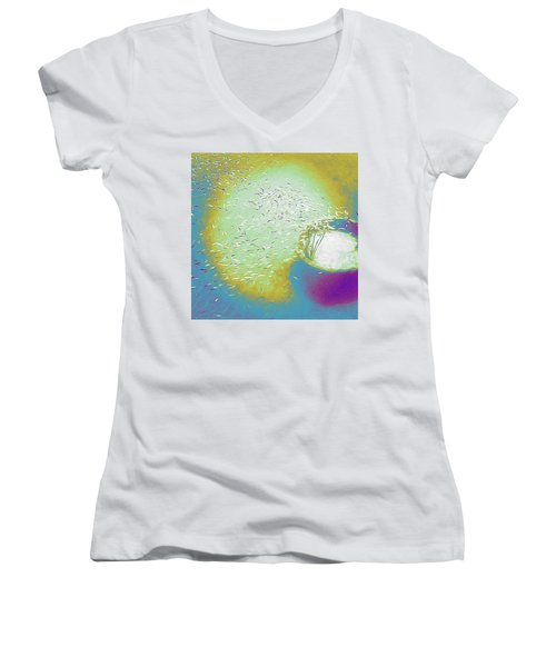 Colorful Pond Women's V-Neck