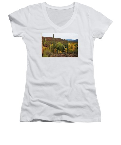 Coon Creek With Saguaros And Cottonwood, Ash, Sycamore Trees With Fall Colors Women's V-Neck T-Shirt (Junior Cut) by Tom Janca