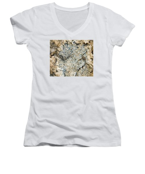 Women's V-Neck T-Shirt (Junior Cut) featuring the photograph Coral Fossil by Jean Noren