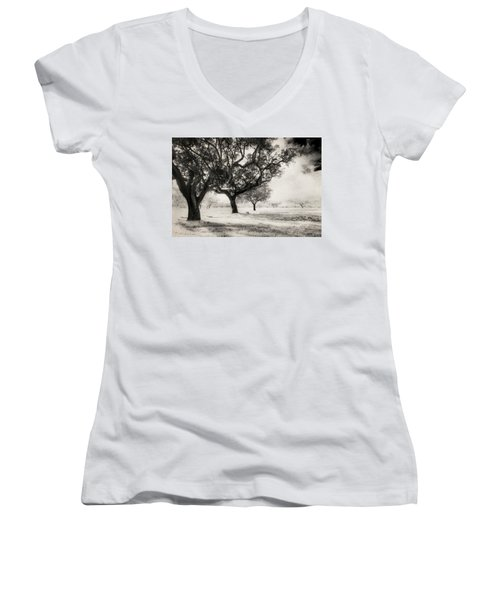 Cork Trees Women's V-Neck T-Shirt (Junior Cut) by Celso Bressan