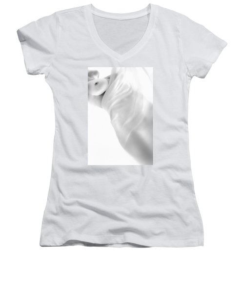 Women's V-Neck T-Shirt (Junior Cut) featuring the photograph Covering The Body by Evgeniy Lankin