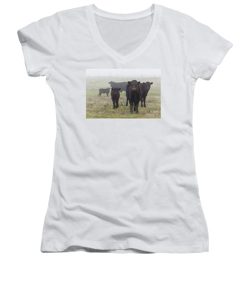 Cows Women's V-Neck