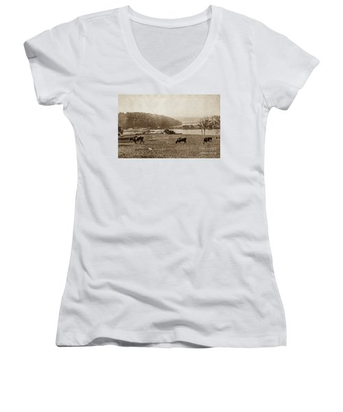 Women's V-Neck T-Shirt featuring the photograph Cows On Baker Field by Cole Thompson