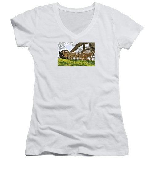 Cows Under Oak #2 Women's V-Neck T-Shirt