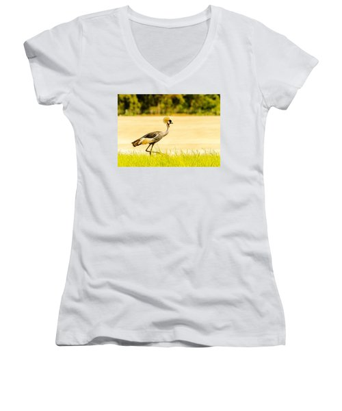 Crested Crane Women's V-Neck (Athletic Fit)