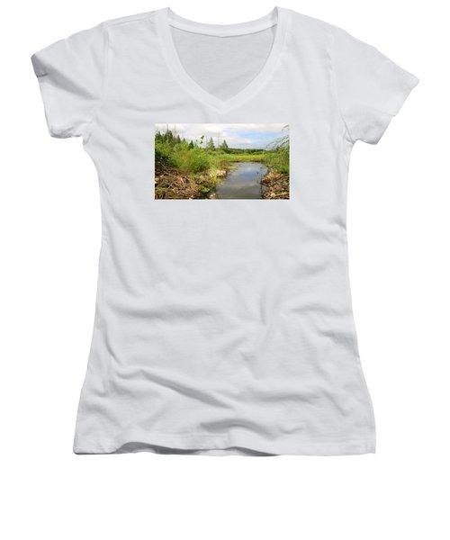 Crooked Creek Preserve Women's V-Neck T-Shirt (Junior Cut) by Kimberly Mackowski