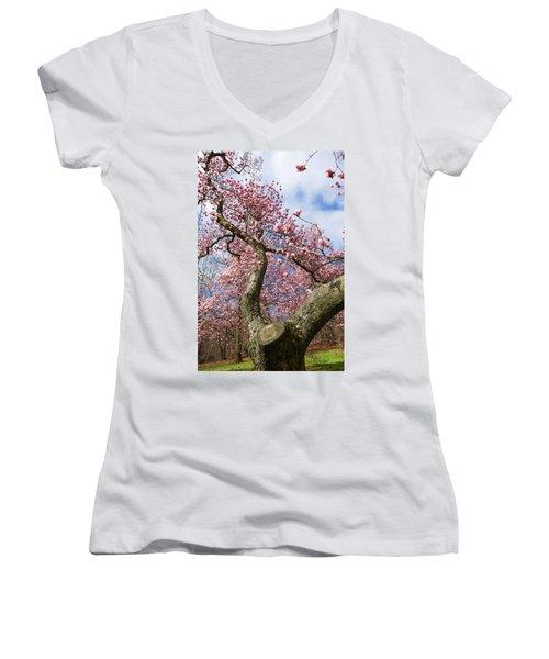 Crooked Magnolia Women's V-Neck