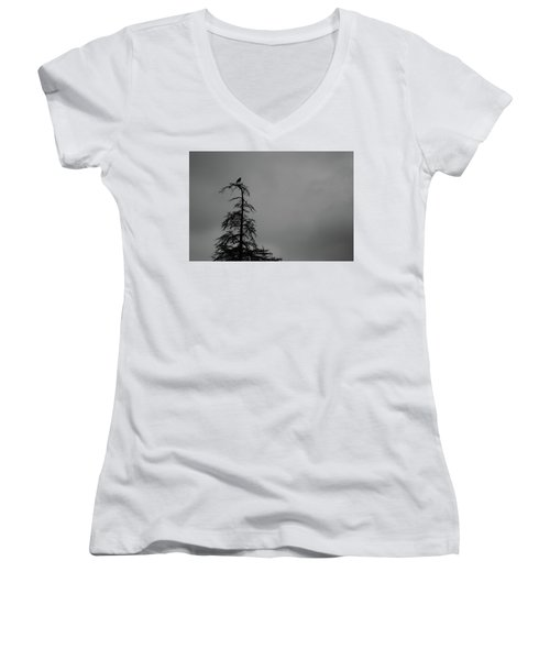 Crow Perched On Tree Top - Black And White Women's V-Neck T-Shirt (Junior Cut) by Matt Harang