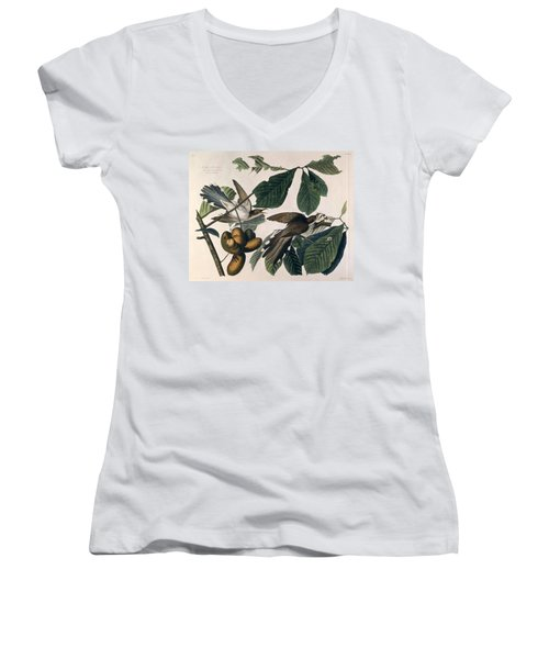 Cuckoo Women's V-Neck T-Shirt (Junior Cut) by John James Audubon