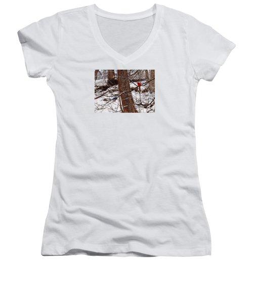 Curious Cardinal Women's V-Neck T-Shirt