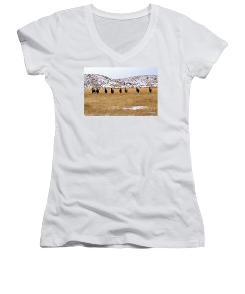 Curious Horses Women's V-Neck (Athletic Fit)