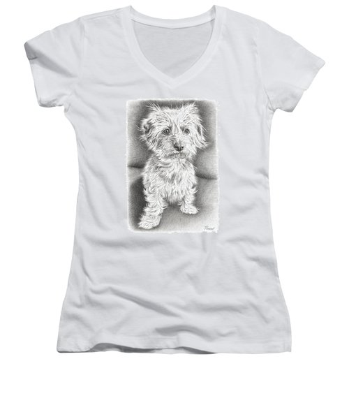 Dachshund Maltese Women's V-Neck