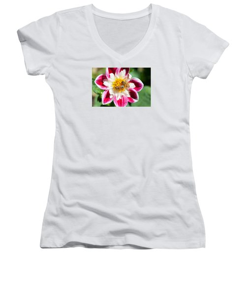 Dahlia Bee Buffet Women's V-Neck (Athletic Fit)